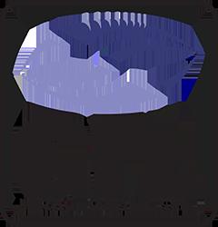gfl playoffs 2019