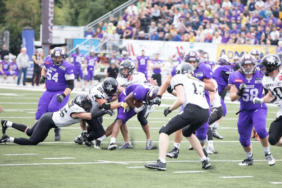 Dacia Vikings besiegen Black Panthers