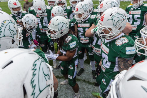 Playoffs: Unicorns empfangen die Berlin Rebels