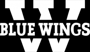Wolfsburg Blue Wings Logo