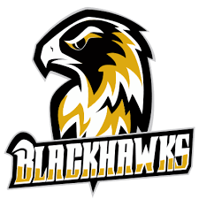 Münster Black Hawks Logo